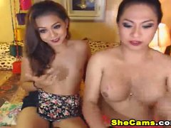 Hot Shemale Gets Her Hard Cock Eaten by her Friend