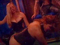 Mistress and Buck Train Tranny