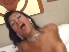 Busty Latina brunette gets banged